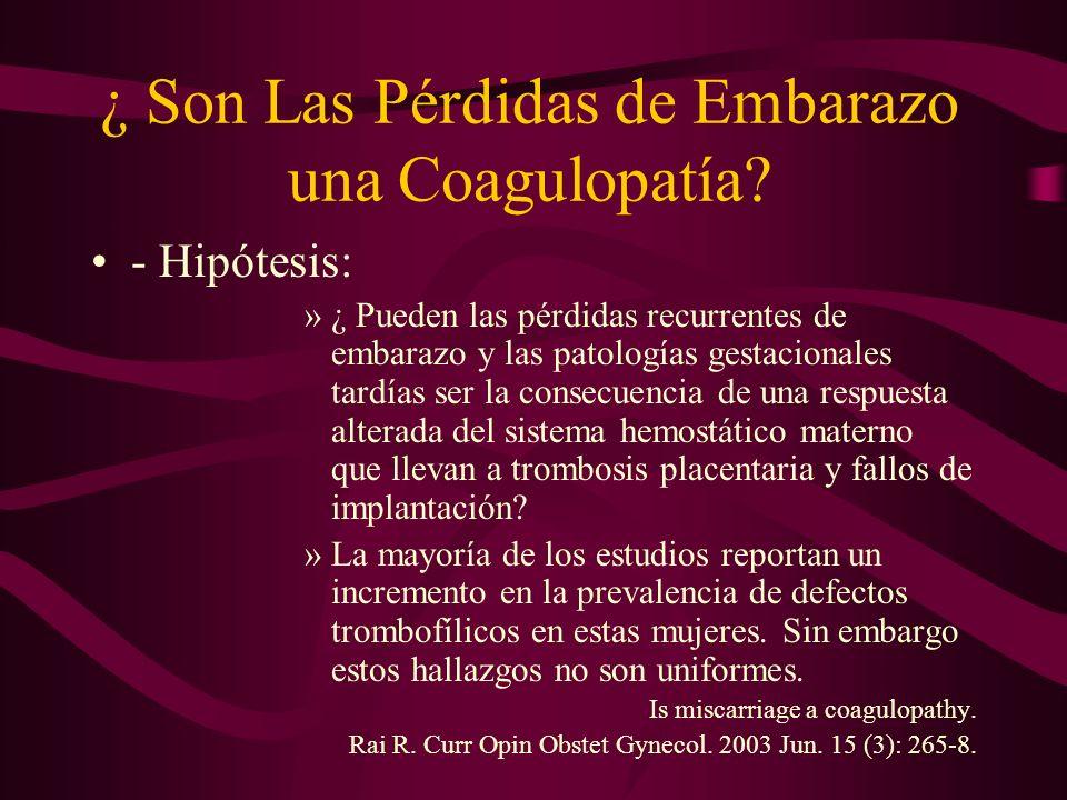 ¿ Son Las Pérdidas de Embarazo una Coagulopatía? - Hipótesis: »¿ Pueden las pérdidas recurrentes de embarazo y las patologías gestacionales tardías se