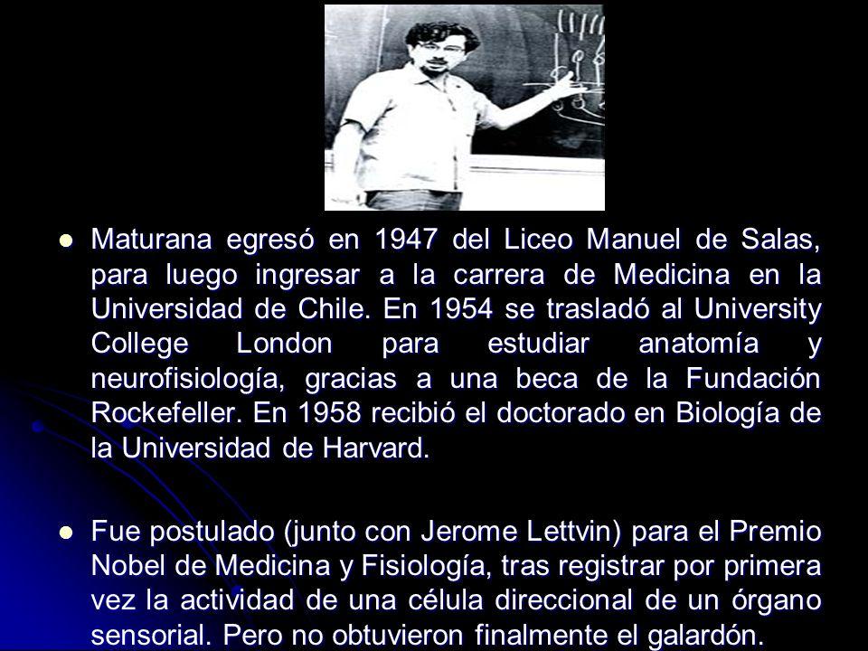 Maturana egresó en 1947 del Liceo Manuel de Salas, para luego ingresar a la carrera de Medicina en la Universidad de Chile. En 1954 se trasladó al Uni