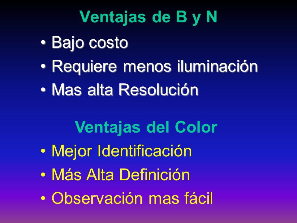 Ventajas de B y N Bajo costoBajo costo Requiere menos iluminaciónRequiere menos iluminación Mas alta ResoluciónMas alta Resolución Ventajas del Color