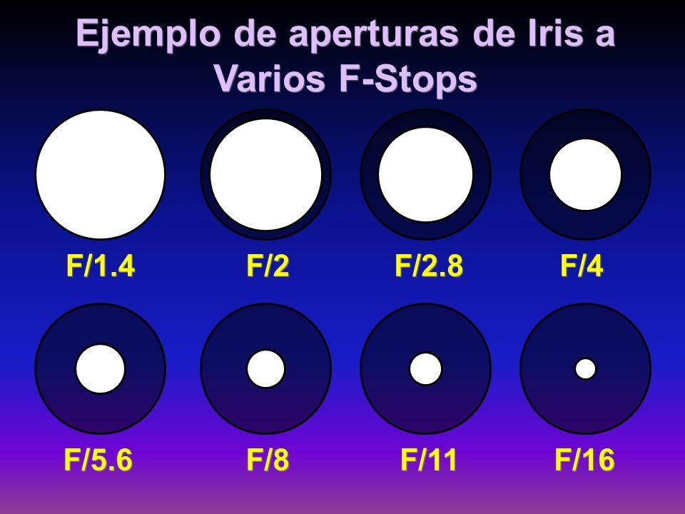 Ejemplo de aperturas de Iris a Varios F-Stops F/1.4 F/2 F/2.8 F/4 F/5.6 F/8 F/11 F/16