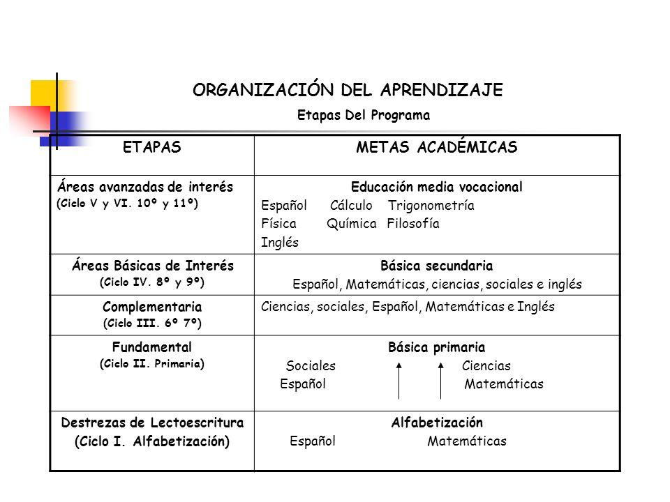 ORGANIZACIÓN DEL APRENDIZAJE Etapas Del Programa ETAPASMETAS ACADÉMICAS Áreas avanzadas de interés (Ciclo V y VI. 10º y 11º) Educación media vocaciona
