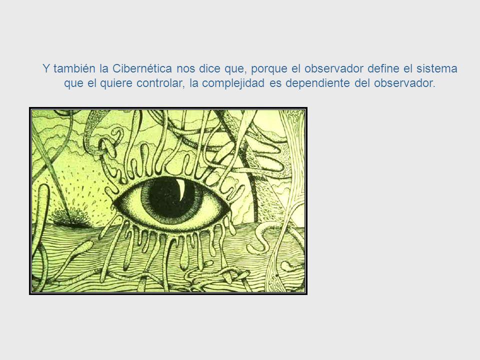 Aunque nunca podremos volver a los tiempos de Leonardo Da Vinci y dominar todos los campos existentes del conocimiento, podemos construir un conjunto de principios que subyacen en el comportamiento de todos los sistemas.