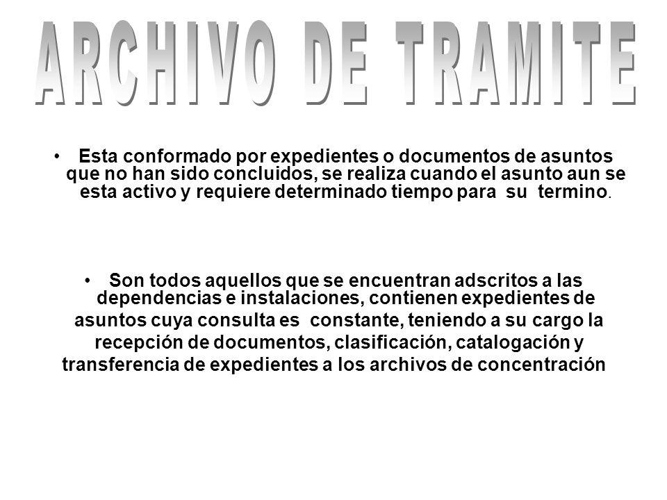 Proporcionar a las áreas de archivo del Instituto, la asesoría técnica que les permita identificar series documentales de acuerdo a la estructura orgánica de la Institución.