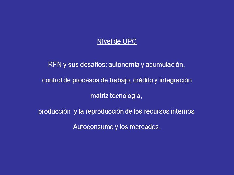Nível de UPC RFN y sus desafíos: autonomía y acumulación, control de procesos de trabajo, crédito y integración matriz tecnología, producción y la reproducción de los recursos internos Autoconsumo y los mercados.