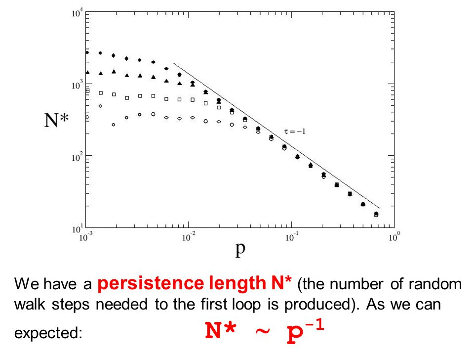 We have a persistence length N* (the number of random walk steps needed to the first loop is produced).