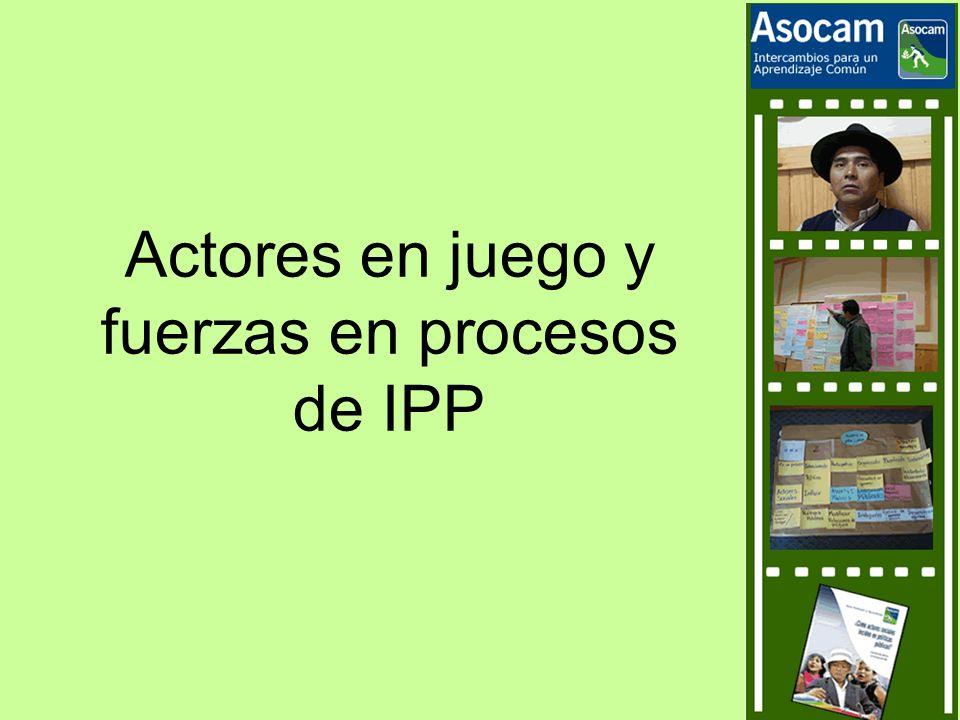 Actores en juego y fuerzas en procesos de IPP