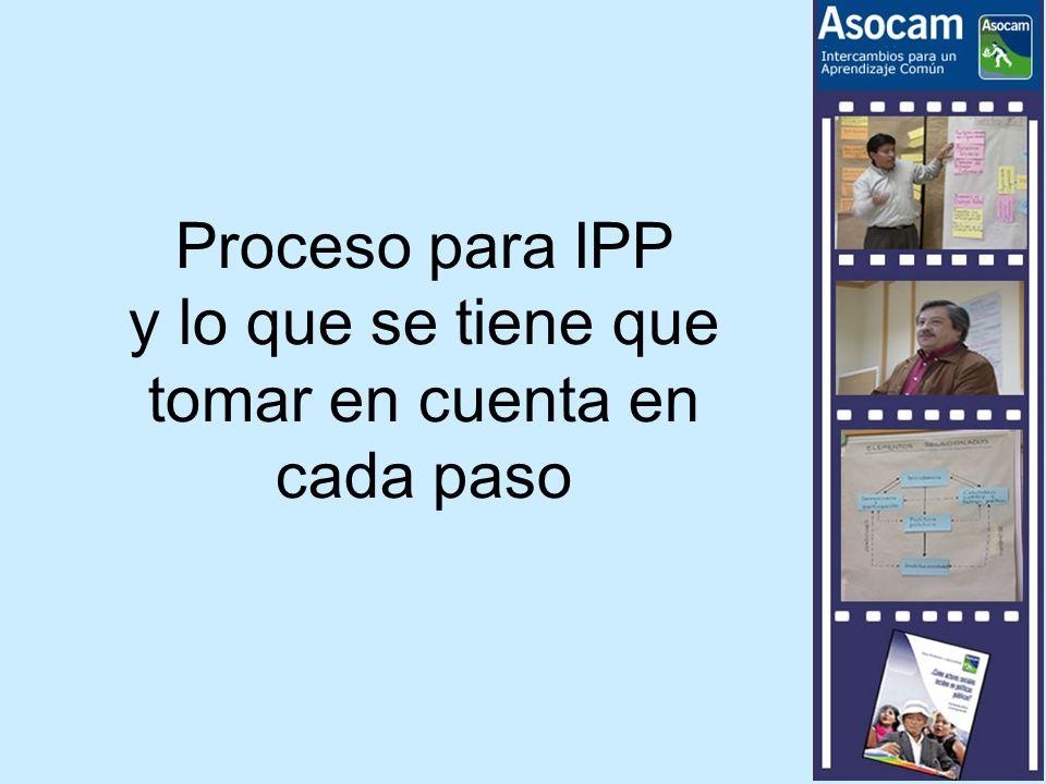 Proceso para IPP y lo que se tiene que tomar en cuenta en cada paso
