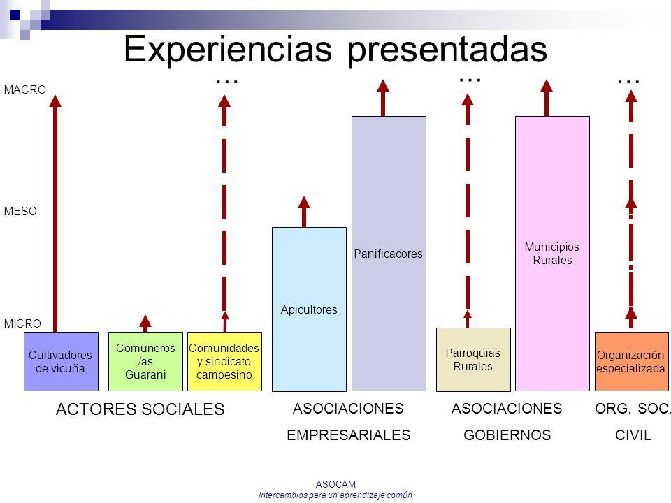 ASOCAM Intercambios para un aprendizaje común … Experiencias presentadas Cultivadores de vicuña MICRO MESO MACRO Comuneros /as Guarani Comunidades y s