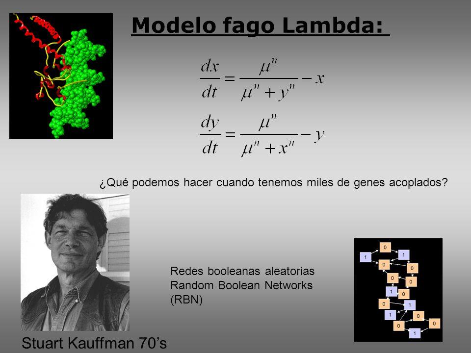 Modelo fago Lambda: ¿Qué podemos hacer cuando tenemos miles de genes acoplados.