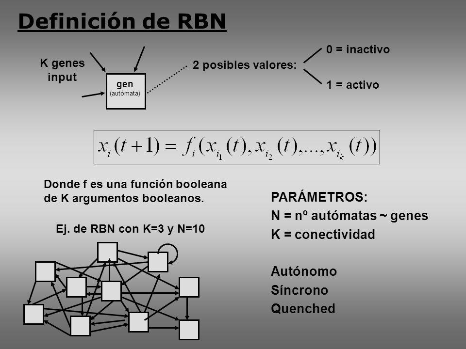K genes input PARÁMETROS: N = nº autómatas ~ genes K = conectividad Autónomo Síncrono Quenched Donde f es una función booleana de K argumentos booleanos.