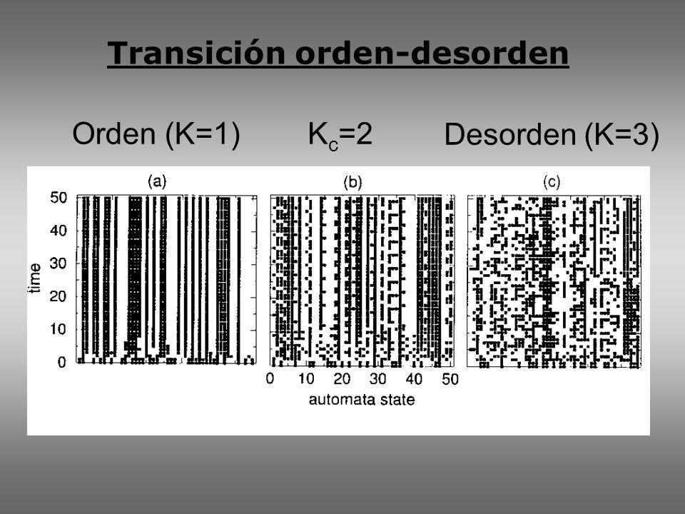 Transición orden-desorden Orden (K=1) Desorden (K=3) K c =2