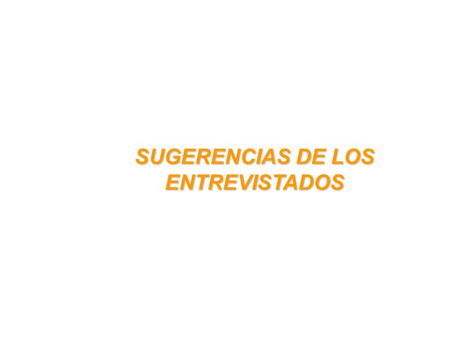 SUGERENCIAS DE LOS ENTREVISTADOS