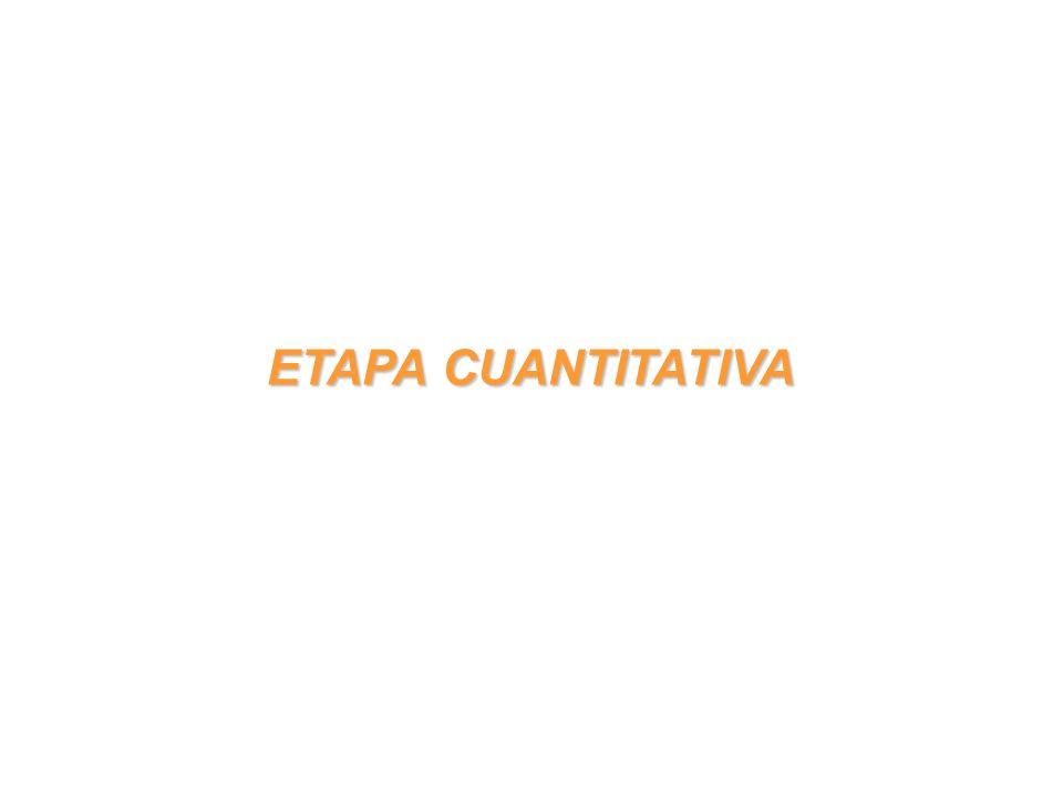 ETAPA CUANTITATIVA
