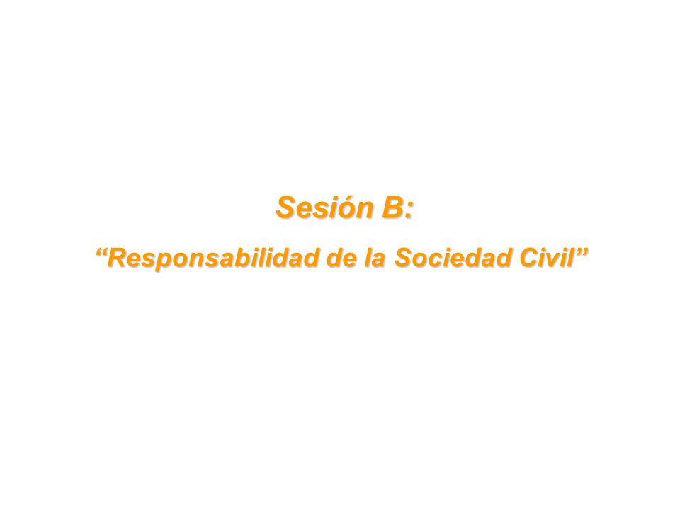 Sesión B: Sesión B: Responsabilidad de la Sociedad Civil