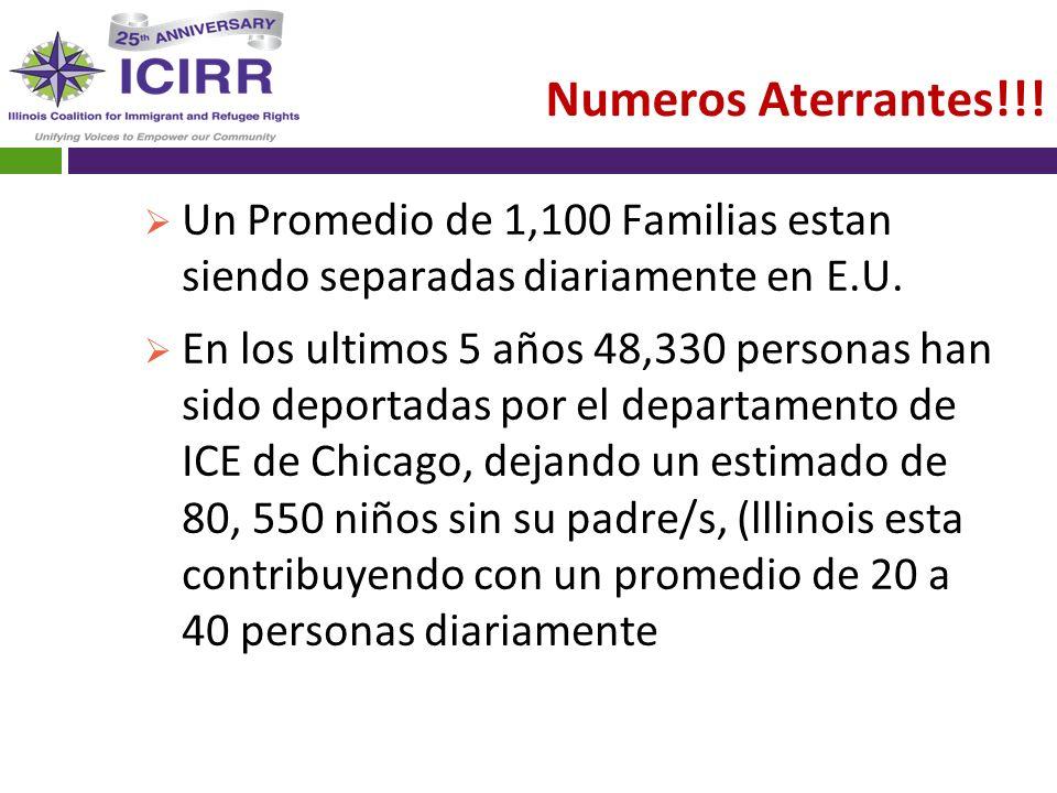 Numeros Aterrantes!!! Un Promedio de 1,100 Familias estan siendo separadas diariamente en E.U. En los ultimos 5 años 48,330 personas han sido deportad