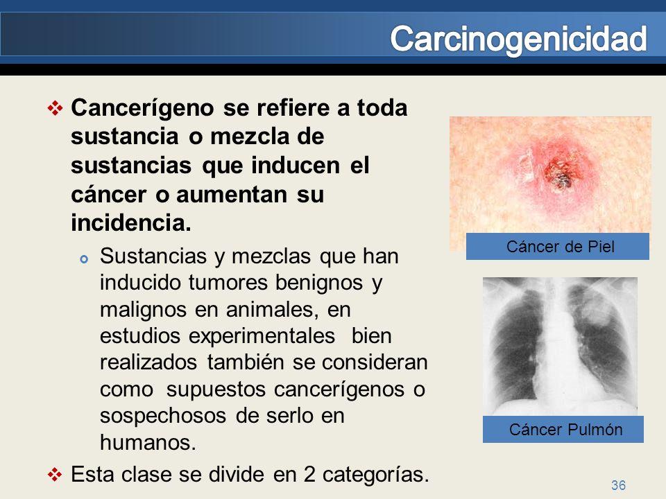 36 Cancerígeno se refiere a toda sustancia o mezcla de sustancias que inducen el cáncer o aumentan su incidencia. Sustancias y mezclas que han inducid