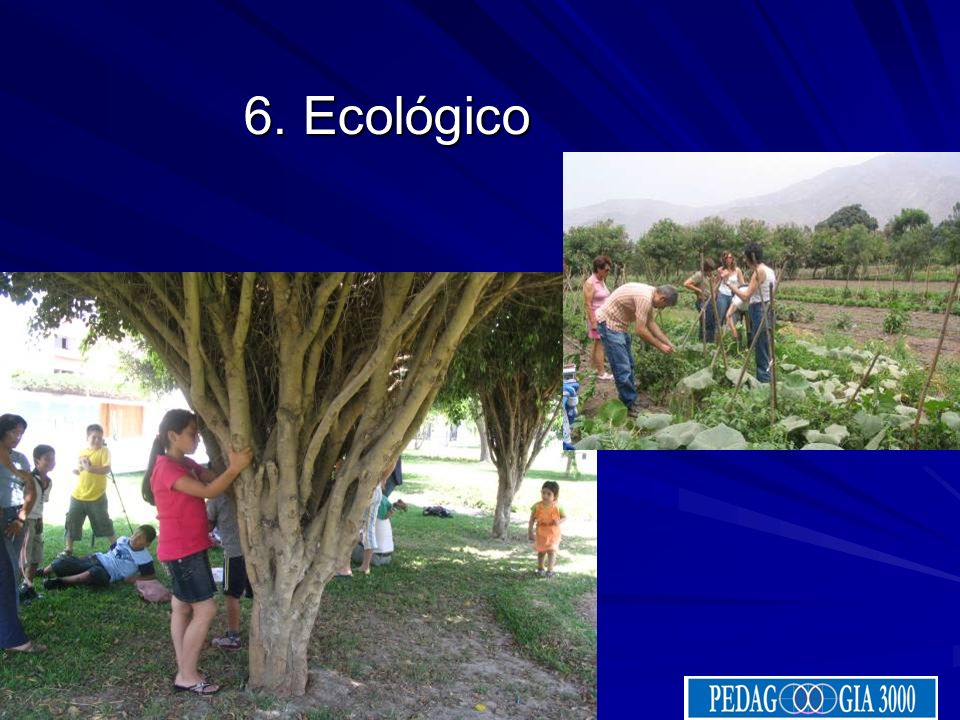 6. Ecológico