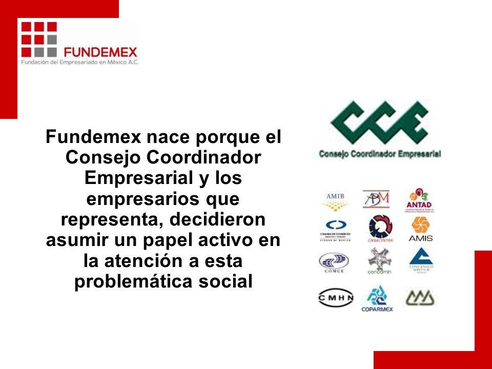 Fundemex nace porque el Consejo Coordinador Empresarial y los empresarios que representa, decidieron asumir un papel activo en la atención a esta problemática social