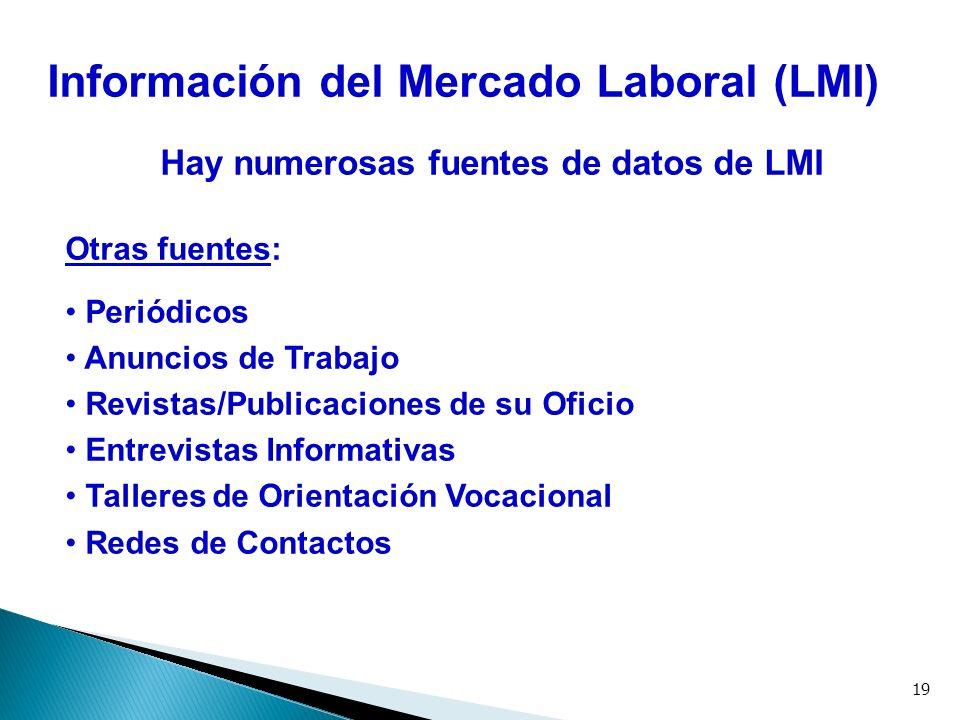 19 Información del Mercado Laboral (LMI) Hay numerosas fuentes de datos de LMI Otras fuentes: Periódicos Anuncios de Trabajo Revistas/Publicaciones de