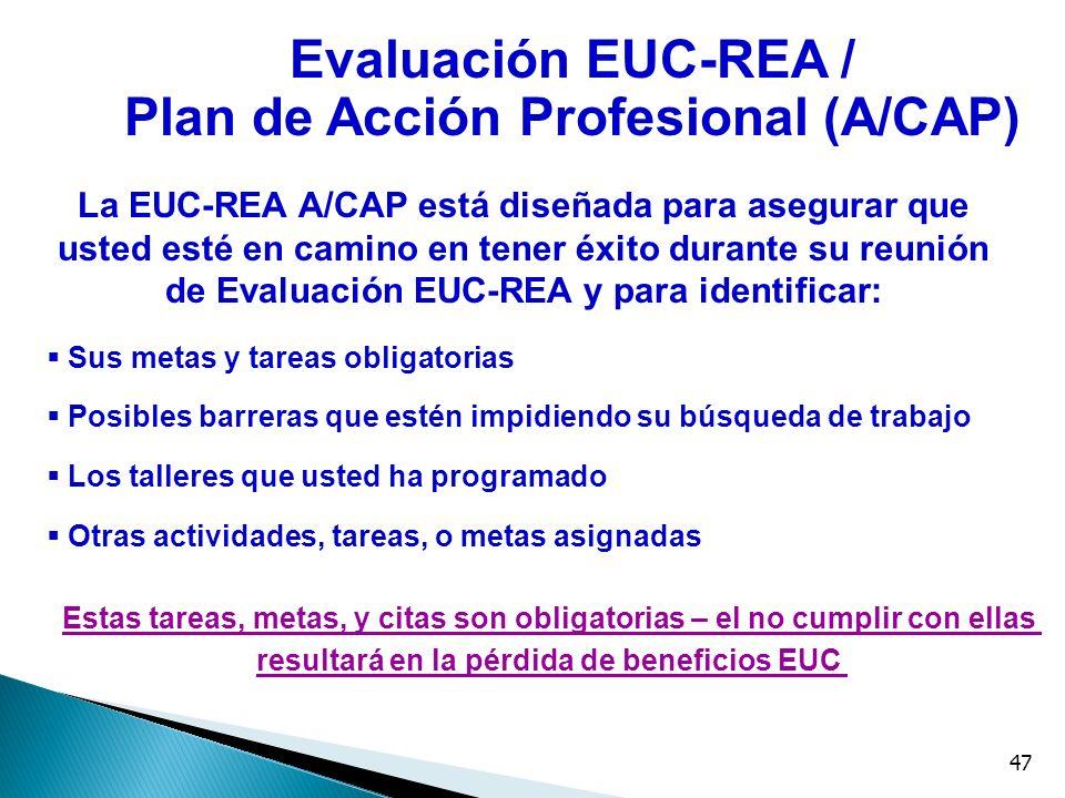 47 La EUC-REA A/CAP está diseñada para asegurar que usted esté en camino en tener éxito durante su reunión de Evaluación EUC-REA y para identificar: S
