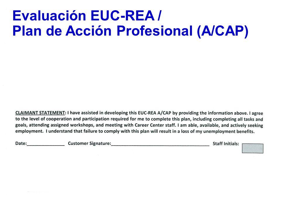 48 Evaluación EUC-REA / Plan de Acción Profesional (A/CAP)