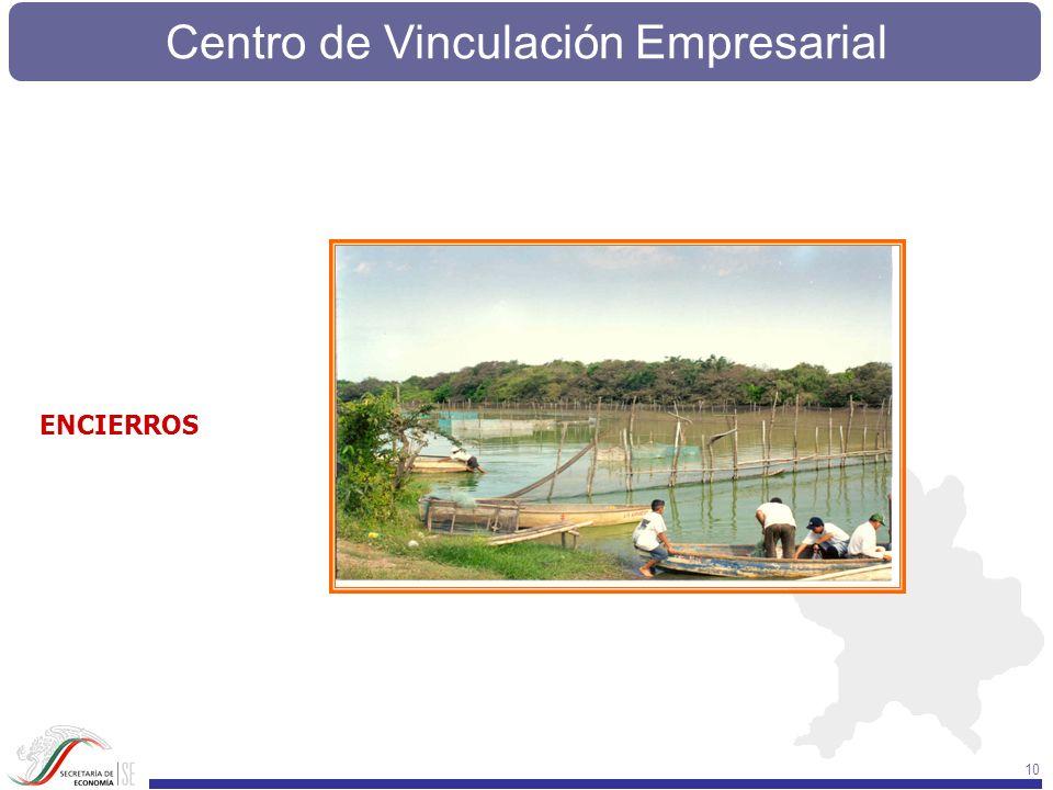 Centro de Vinculación Empresarial 10 ENCIERROS