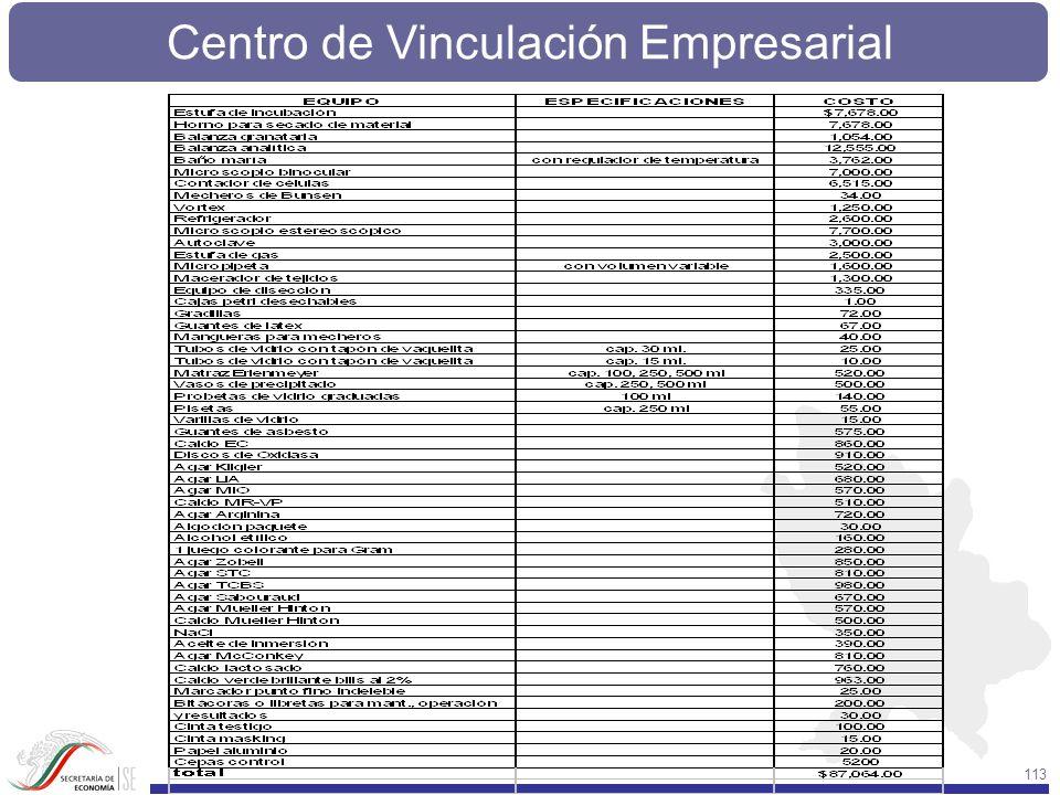 Centro de Vinculación Empresarial 113