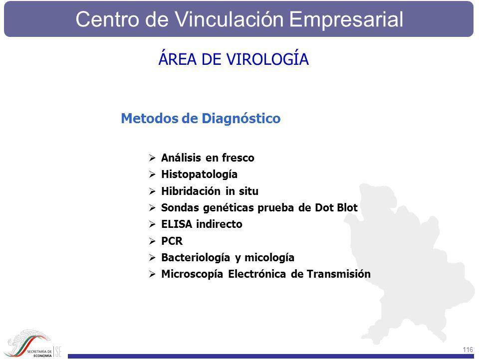 Centro de Vinculación Empresarial 116 Metodos de Diagnóstico Análisis en fresco Histopatología Hibridación in situ Sondas genéticas prueba de Dot Blot