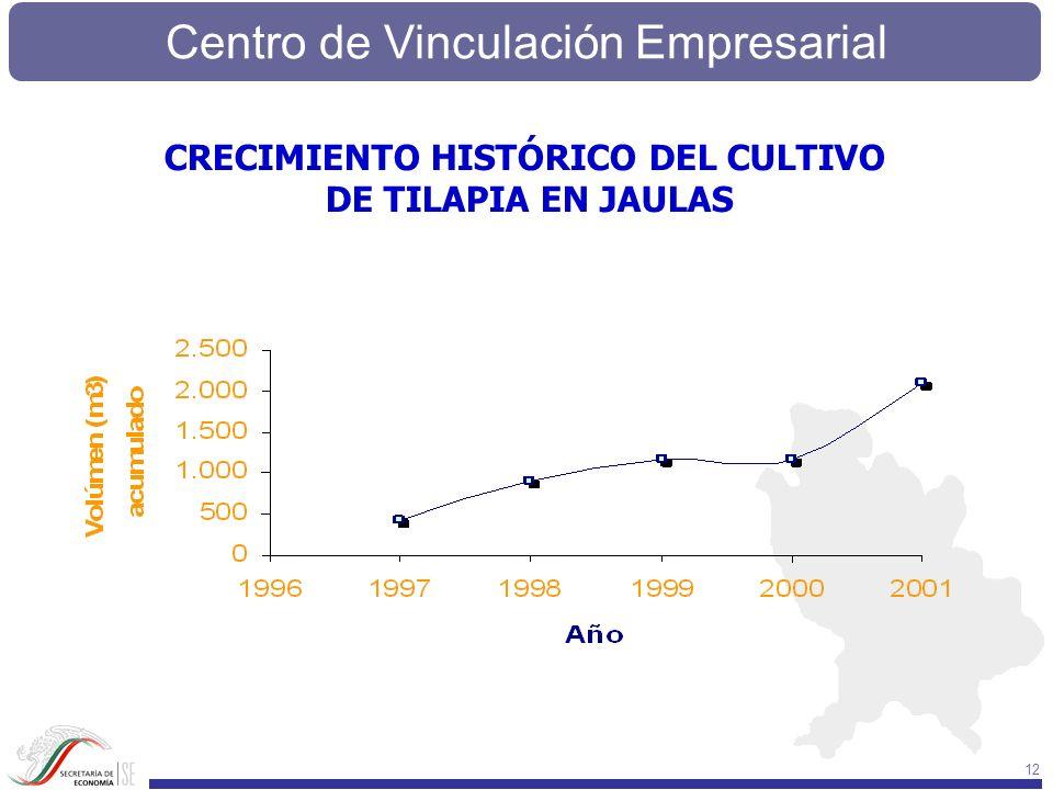 Centro de Vinculación Empresarial 12 CRECIMIENTO HISTÓRICO DEL CULTIVO DE TILAPIA EN JAULAS