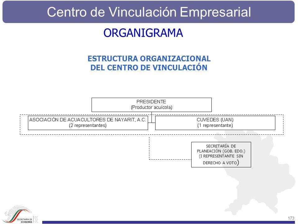 Centro de Vinculación Empresarial 173 SECRETARÍA DE PLANEACIÓN (GOB. EDO.) (I REPRESENTANTE SIN DERECHO A VOTO ) ESTRUCTURA ORGANIZACIONAL DEL CENTRO
