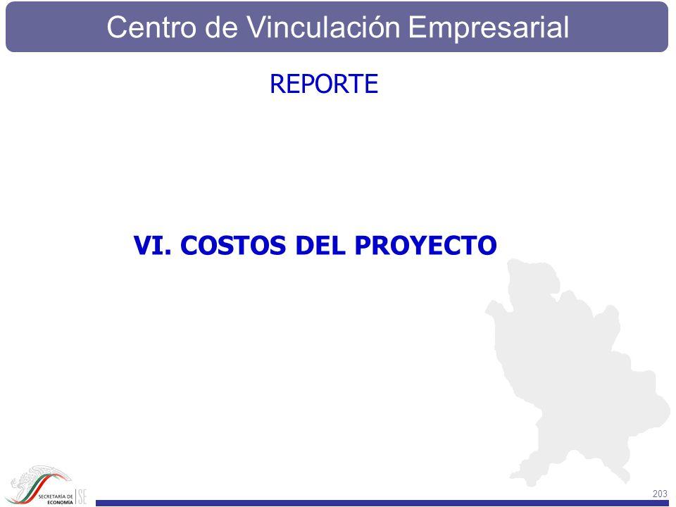 Centro de Vinculación Empresarial 203 VI. COSTOS DEL PROYECTO REPORTE
