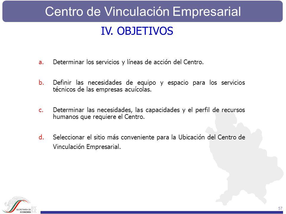 Centro de Vinculación Empresarial 57 a.Determinar los servicios y líneas de acción del Centro. b.Definir las necesidades de equipo y espacio para los