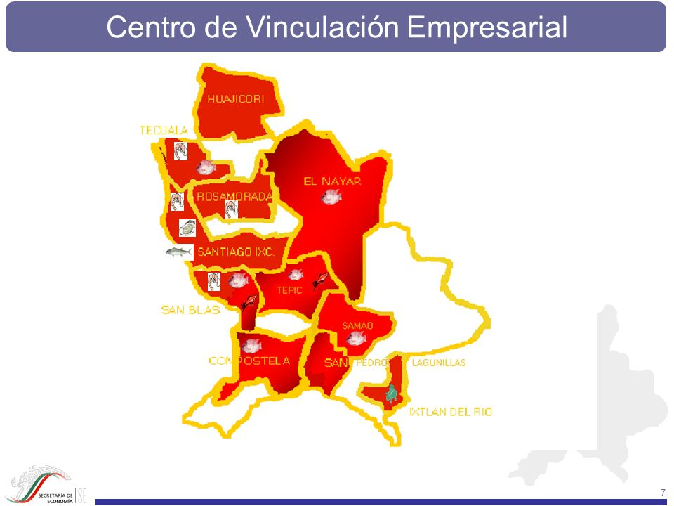 Centro de Vinculación Empresarial 228 COMO RESULTADO DE LA BAJA INVERSION Y LA DESCAPITALIZACION QUE SUFREN LA MAYOR PARTE DE LAS UNIDADES ECONOMICAS DEL SECTOR DE LA PESCA EN NAYARIT, SE TIENE UNA MUY BAJA PRODUCTIVIDAD.