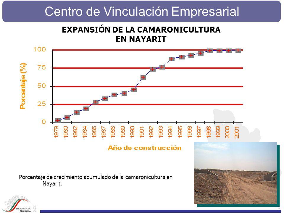 8 EXPANSIÓN DE LA CAMARONICULTURA EN NAYARIT Porcentaje de crecimiento acumulado de la camaronicultura en Nayarit.