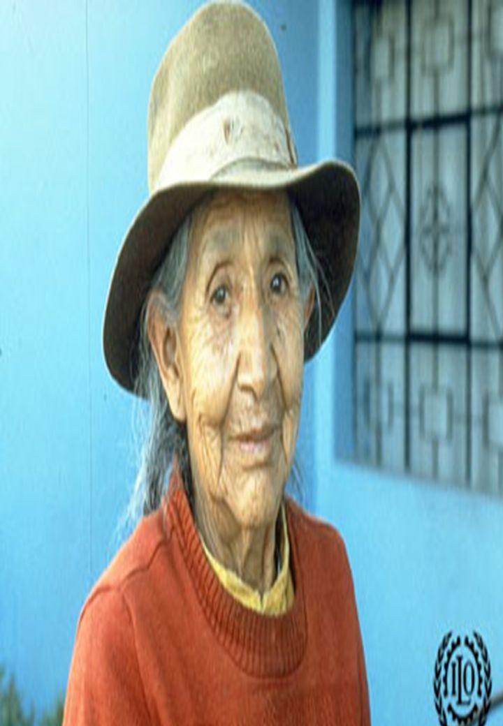 Proyecto OIT Sobre Pueblos Indígenas y Tribales Transparencia No. 1