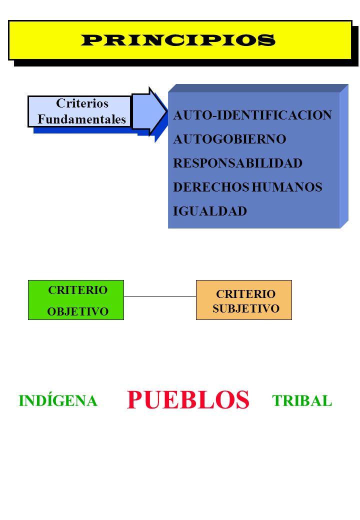 Proyecto OIT Sobre Pueblos Indígenas y Tribales Transparencia No. 10 PRINCIPIOS Criterios Fundamentales AUTO-IDENTIFICACION AUTOGOBIERNO RESPONSABILID