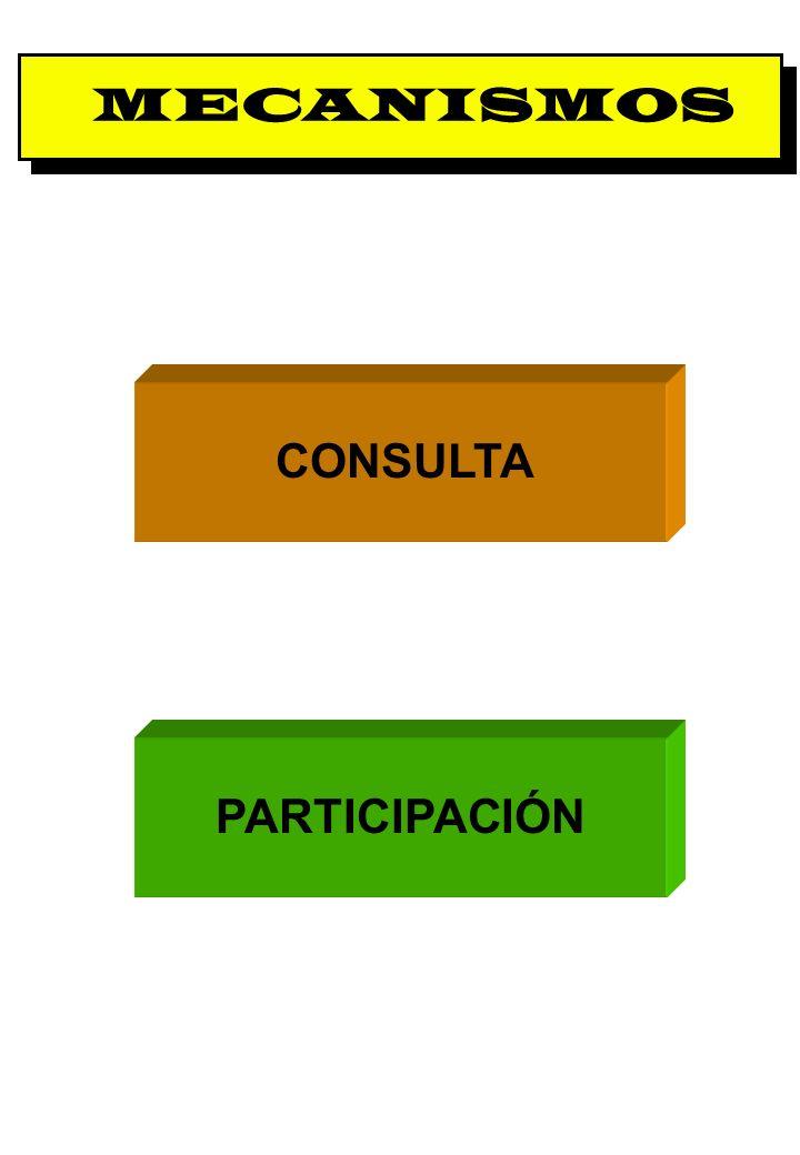 Proyecto OIT Sobre Pueblos Indígenas y Tribales Transparencia No. 13 MECANISMOS CONSULTA PARTICIPACIÓN