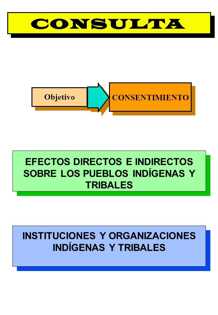 Proyecto OIT Sobre Pueblos Indígenas y Tribales Transparencia No. 14 CONSULTA EFECTOS DIRECTOS E INDIRECTOS SOBRE LOS PUEBLOS INDÍGENAS Y TRIBALES INS
