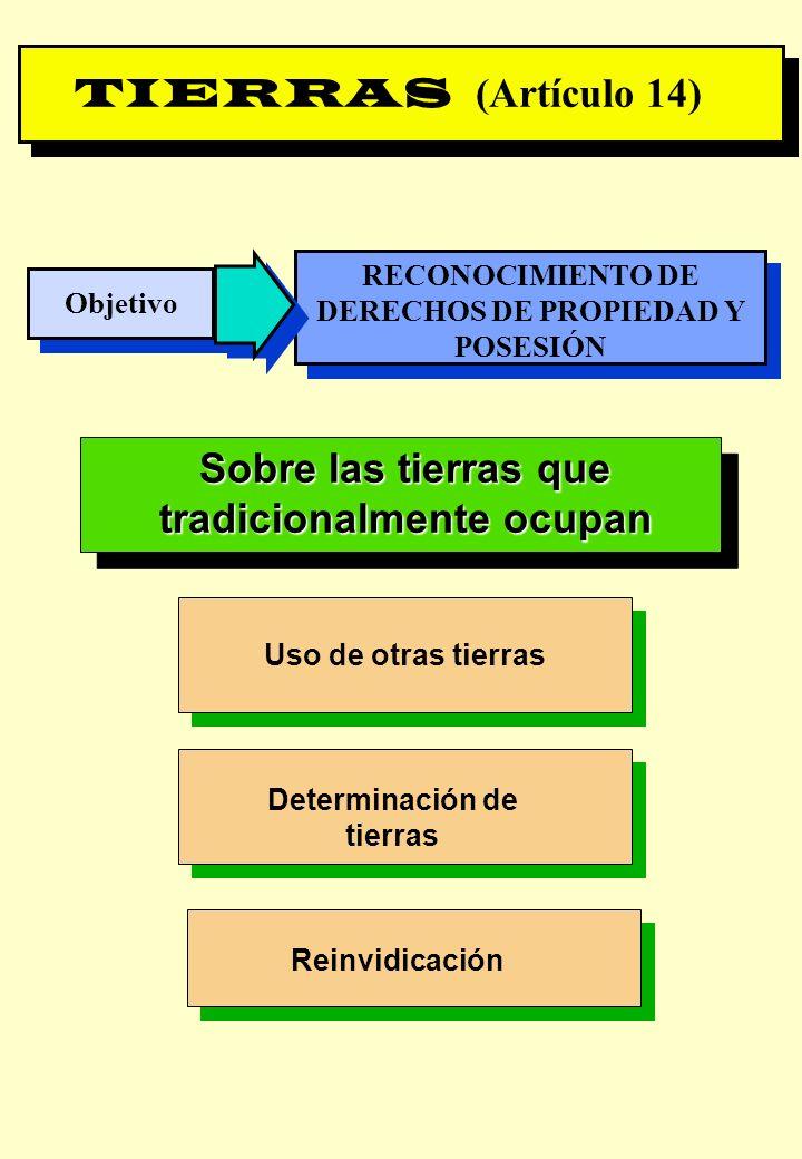 Proyecto OIT Sobre Pueblos Indígenas y Tribales Transparencia No. 19 TIERRAS (Artículo 14) Objetivo RECONOCIMIENTO DE DERECHOS DE PROPIEDAD Y POSESIÓN