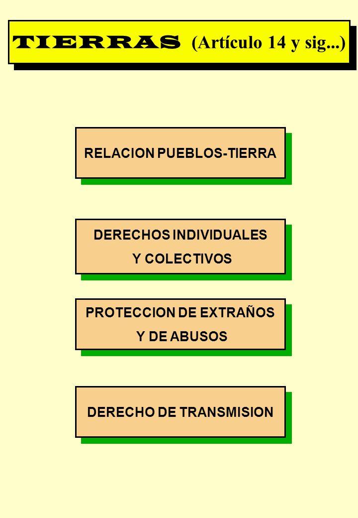 Proyecto OIT Sobre Pueblos Indígenas y Tribales Transparencia No. 20 RELACION PUEBLOS-TIERRA DERECHOS INDIVIDUALES Y COLECTIVOS DERECHOS INDIVIDUALES
