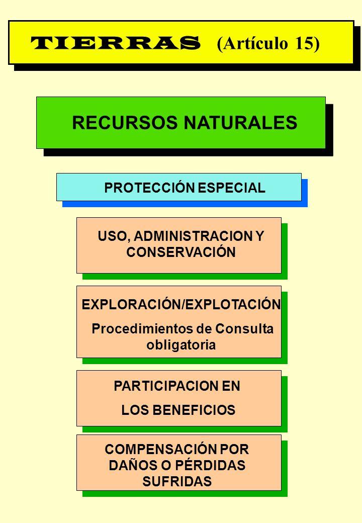 Proyecto OIT Sobre Pueblos Indígenas y Tribales Transparencia No. 21 RECURSOS NATURALES PROTECCIÓN ESPECIAL USO, ADMINISTRACION Y CONSERVACIÓN EXPLORA
