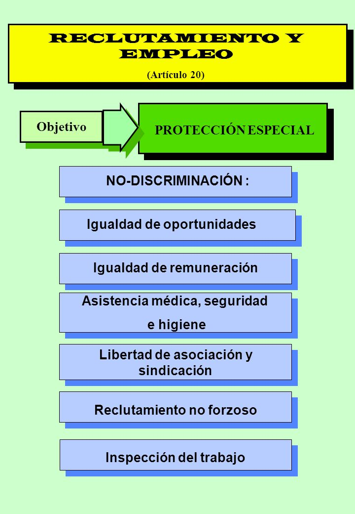 Proyecto OIT Sobre Pueblos Indígenas y Tribales Transparencia No. 24 RECLUTAMIENTO Y EMPLEO (Artículo 20) Objetivo PROTECCIÓN ESPECIAL NO-DISCRIMINACI
