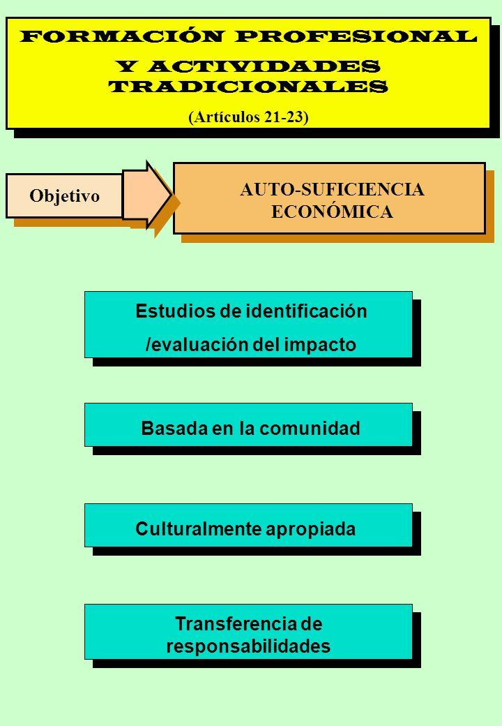 Proyecto OIT Sobre Pueblos Indígenas y Tribales Transparencia No. 26 FORMACIÓN PROFESIONAL Y ACTIVIDADES TRADICIONALES (Artículos 21-23) Objetivo AUTO