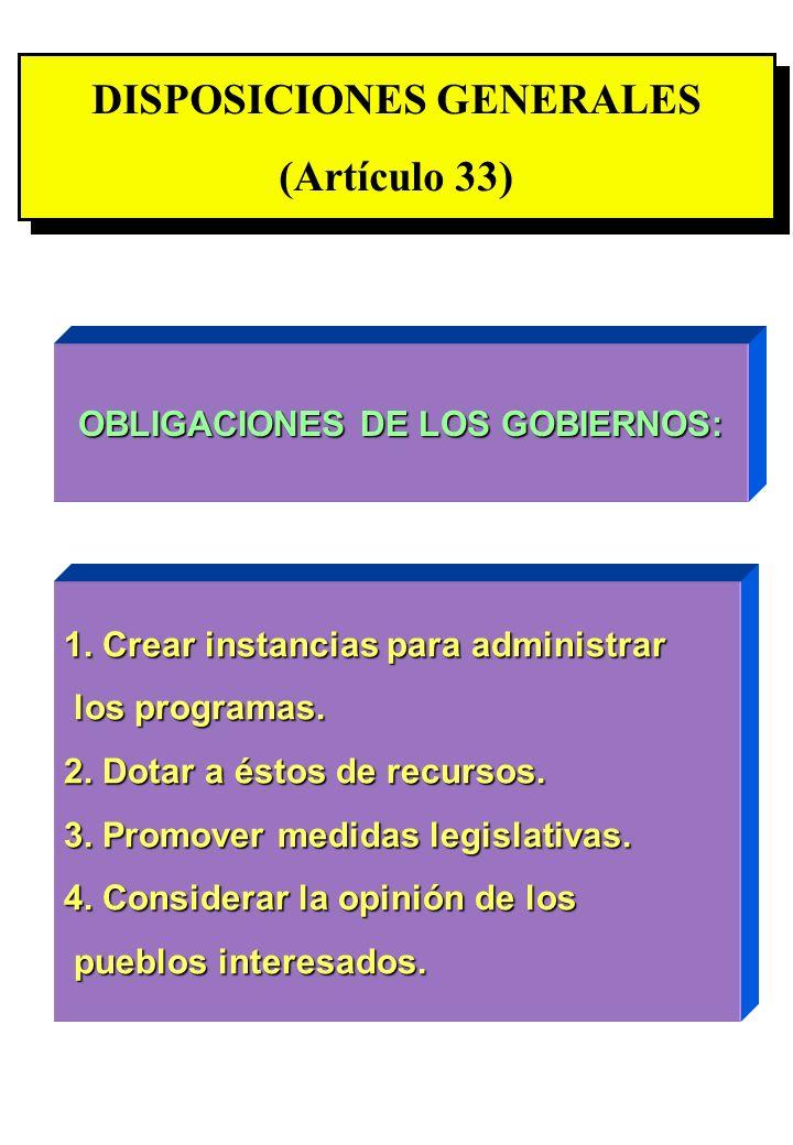 Proyecto OIT Sobre Pueblos Indígenas y Tribales Transparencia No. 30 DISPOSICIONES GENERALES (Artículo 33) DISPOSICIONES GENERALES (Artículo 33) OBLIG