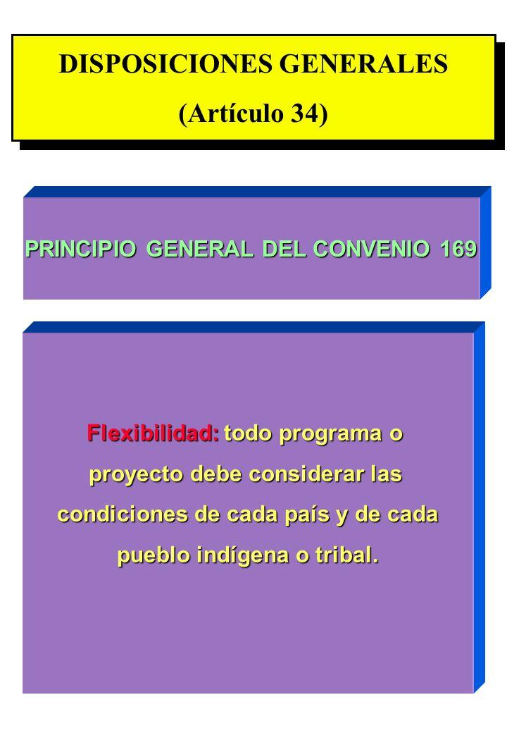 Proyecto OIT Sobre Pueblos Indígenas y Tribales Transparencia No. 31 DISPOSICIONES GENERALES (Artículo 34) DISPOSICIONES GENERALES (Artículo 34) PRINC