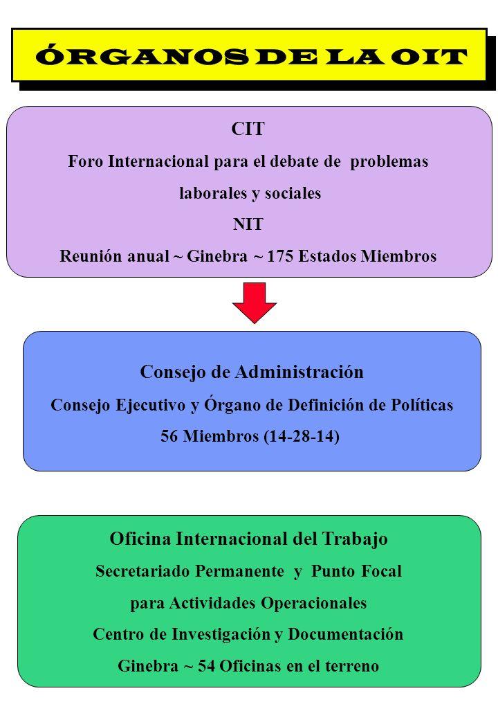 Proyecto OIT Sobre Pueblos Indígenas y Tribales Transparencia No. 4 ÓRGANOS DE LA OIT CIT Foro Internacional para el debate de problemas laborales y s