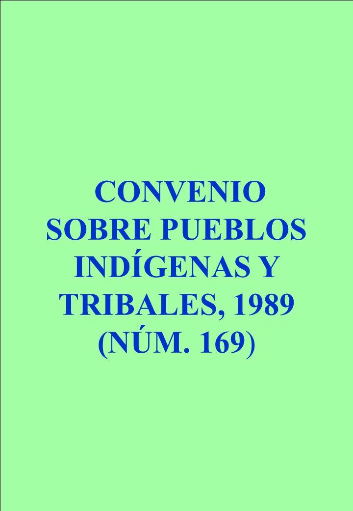 Proyecto OIT Sobre Pueblos Indígenas y Tribales Transparencia No. 7 CONVENIO SOBRE PUEBLOS INDÍGENAS Y TRIBALES, 1989 (NÚM. 169)