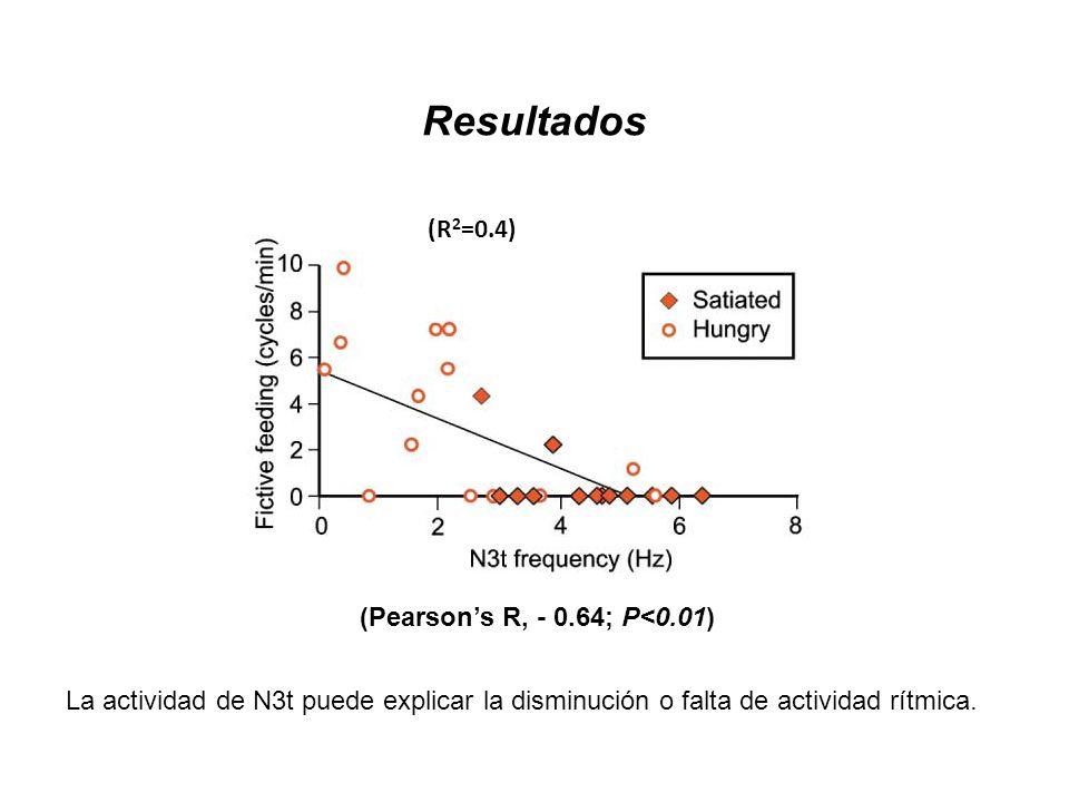 Resultados (R 2 =0.4) (Pearsons R, - 0.64; P<0.01) La actividad de N3t puede explicar la disminución o falta de actividad rítmica.