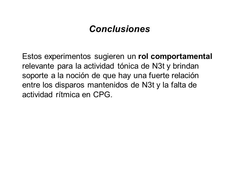 Conclusiones Estos experimentos sugieren un rol comportamental relevante para la actividad tónica de N3t y brindan soporte a la noción de que hay una