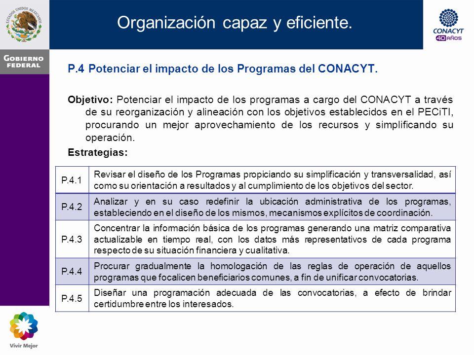 Organización capaz y eficiente. P.3 Diseñar procesos continuos de prospectiva y planeación.